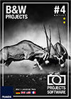 bw-projects4-cover
