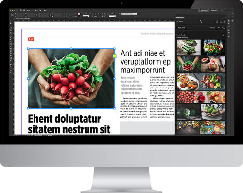 shutterstock_plug-in-indesign