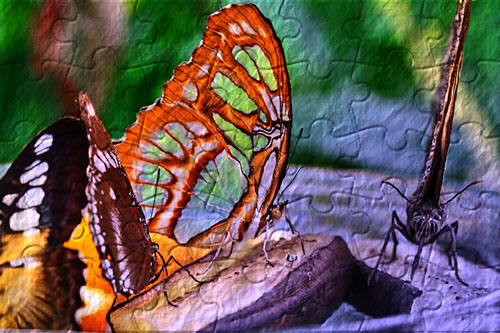 colorprojects5-schmetterling-toenung-papier-puzzle