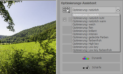 emotionprojectspro-optimierungsassistent