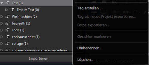 photodirector9-tag-verschachtelt