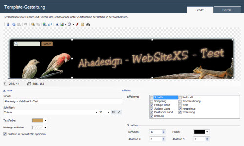 websitex5-templategestaltung-header